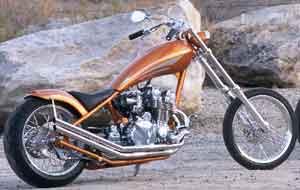 Denny Berg Chopper
